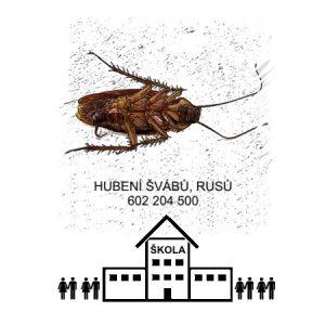 Jak vyhubit likvidace švábů rusů Praha levně