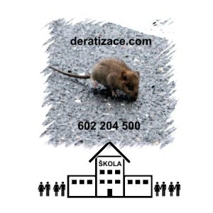 Hubení likvidace potkanů škola školní jídelna Praha ceník