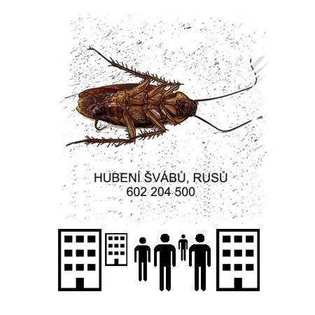 Hubení švábů rusů likvidace hotely, kanceláře, sklady