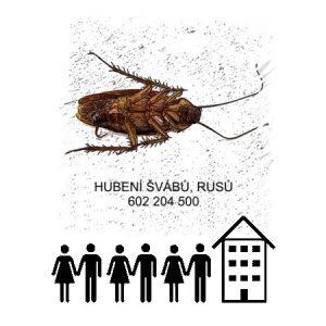 Hubení deratizace likvidace švábů rusů bytové domy byty Praha