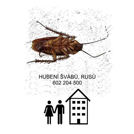 Hubení švábů rusů likvidace deratizace byt dům Praha