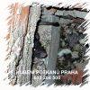Hubení likvidace potkanů myší hlodavců Praha deratizace